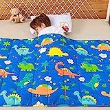 Anjee Kinder-Gewichtsdecke, 100% natürliche Baumwolle, Schwere Decke für Kinder und Jugendliche, 2.3kg 90x120cm, Dinopark