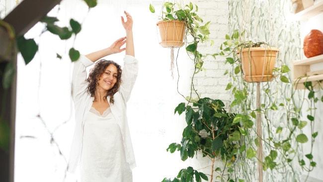 Pflanzen im Schlafzimmer Vorteile